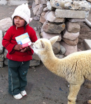 Report from the Andes
